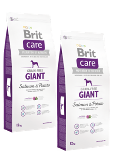 DuoPack Brit Care Dog Grain-free Giant Salmon & Potato 12kg